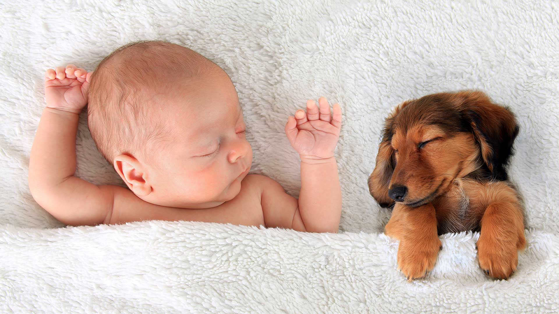 WATCH: Baby and Dog Show Love for One Another