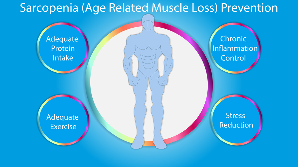 how to strengthen aging muscles